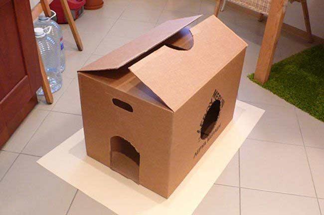 Karton dla psa