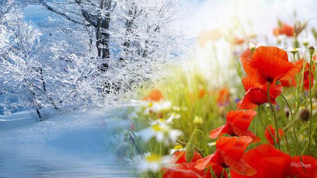 pogoda w zimie i wiosną