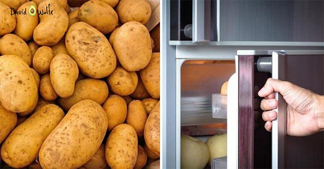 przesunięcie lodówki przez ziemniaka
